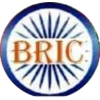 Briclogo