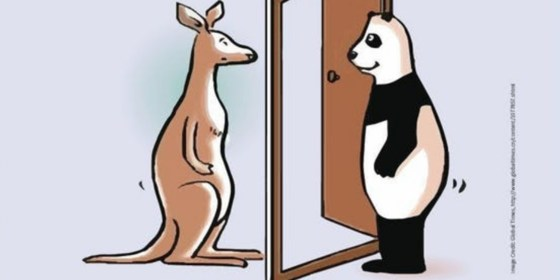 China's Rise in Australia: reframing the relationship